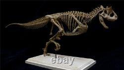 Carnotaurus Skeleton Modèle Abelisauridae Jouets Dinosaur Cadeau Collectionneur Animal